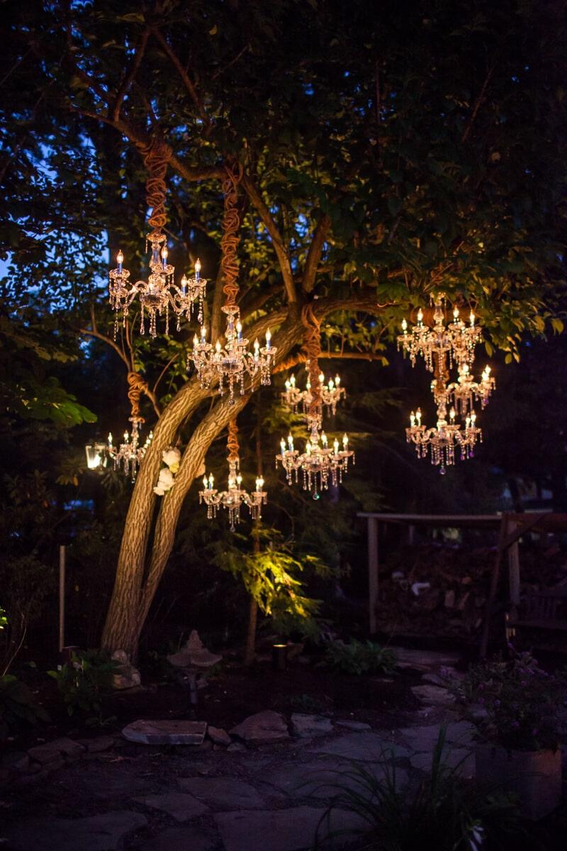 backyard-wedding-10