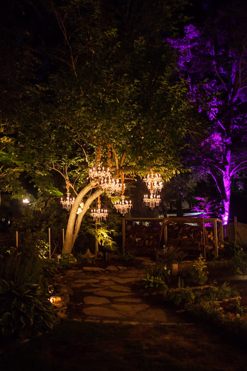 backyard-wedding-2